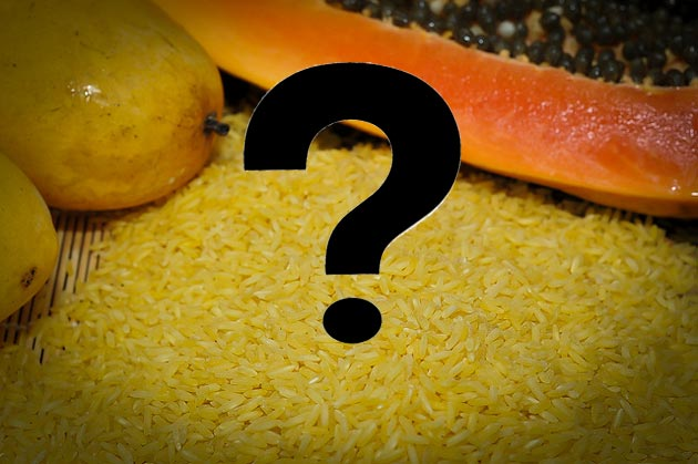 5 Surprising Genetically Modified Foods