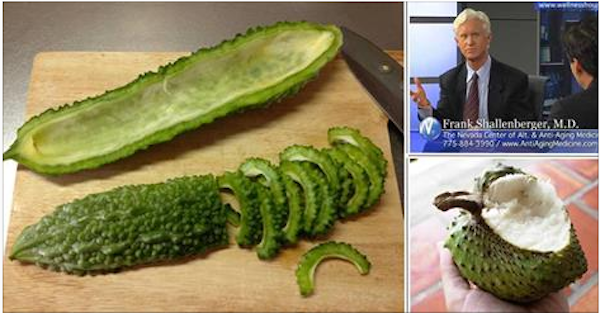 The Plant That Kills Cancer Cells, Stop Diabetes and Boosts Your Immune System!