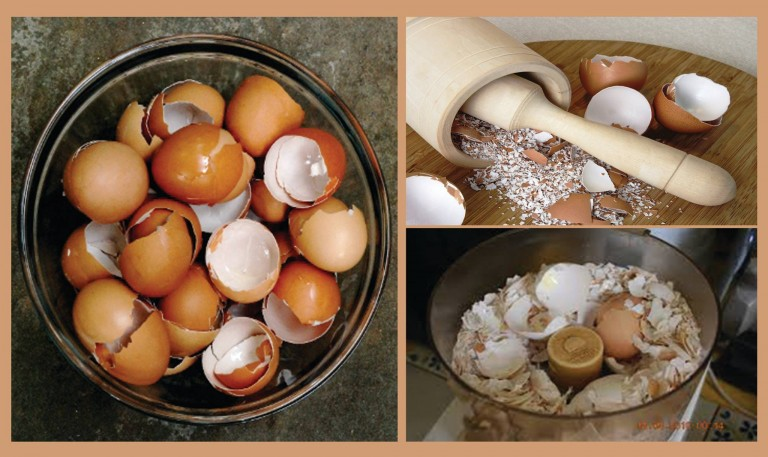 Why You Should Not Throw Away Eggshells?